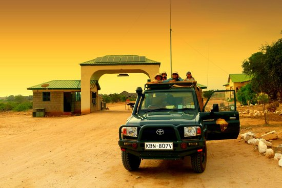 Bush Company: gate tsavo