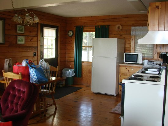 Arkansas White River Cabins: View of kitchen