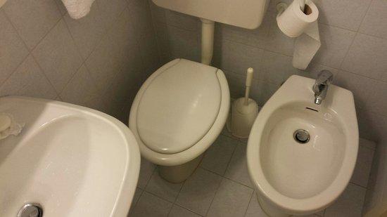 Hotel Diana: Nassraum viel zu eng!  Sitzen am WC war für mich nicht möglich.