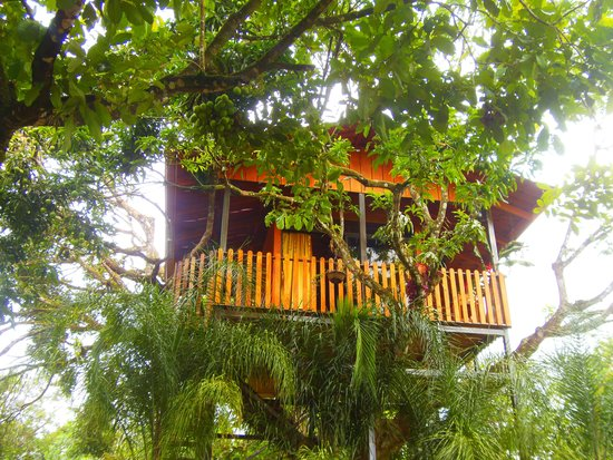 Heliconias Nature Lodge Reviews