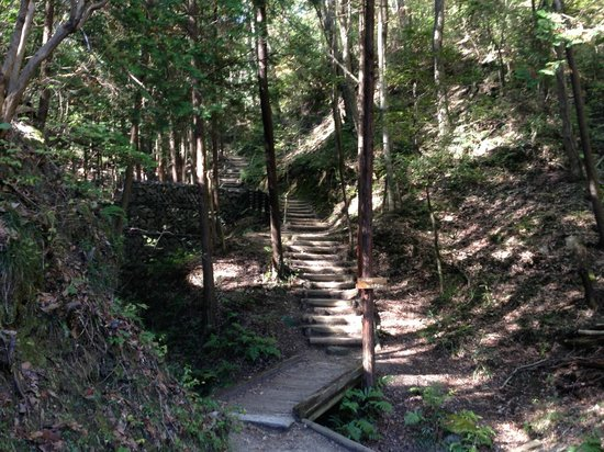 Osaka Prefecture Parks: ほしだ園地