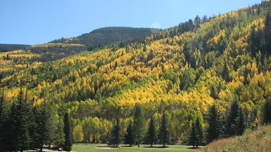Vail Golf Club : colors @Vail