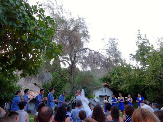 Casa Cody: Wedding