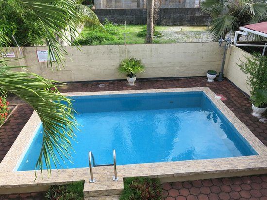 Guesthouse Amice : Swimming pool