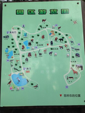 Map Picture of Chengdu Zoo Chengdu TripAdvisor