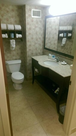 Hampton Inn & Suites Chicago North Shore/Skokie: Roomy restroom