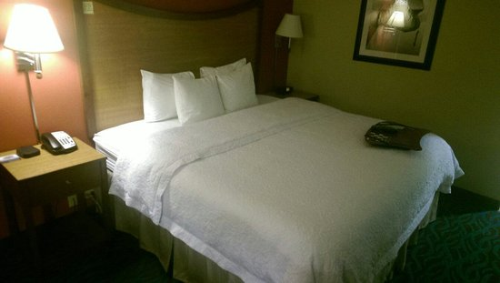 Hampton Inn & Suites Chicago North Shore/Skokie: Comfortable bed