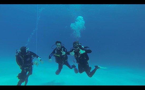 Felisa III Diving