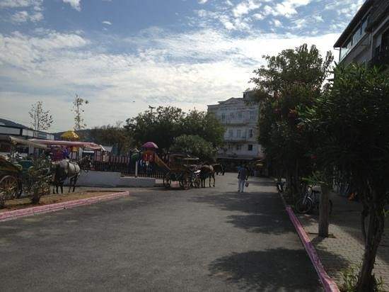 Burgazada: Horse carriages for the island tour