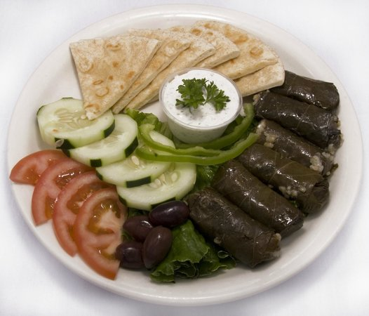 Delicious Greek Food Review Of Troys Authentic Greek Cuisine