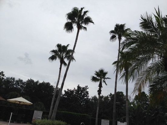 Legacy Vacation Resorts-Lake Buena Vista: Even with a storm on the horizon, the pool was beautiful.