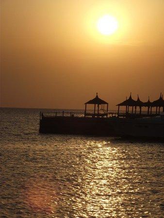Beach Albatros Resort: NAPFELKELTE....
