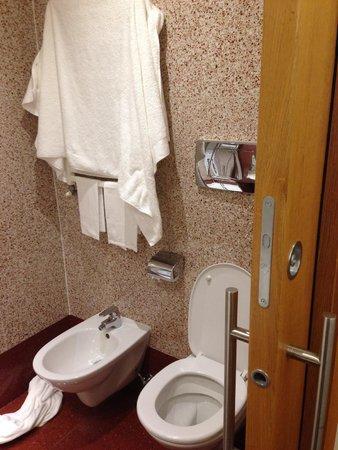 Hilton Garden Inn Rome Claridge: Bidet and Toilet