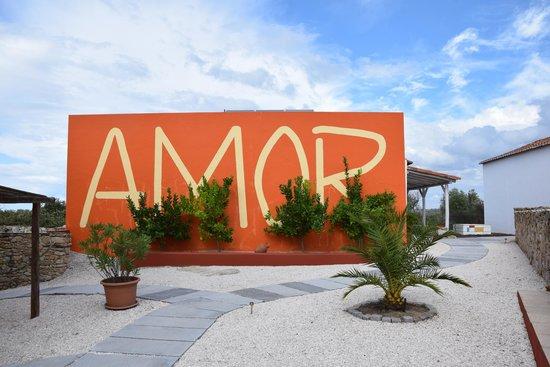 Quinta Serra De Sao Mamede: the first glimpse you get of the house