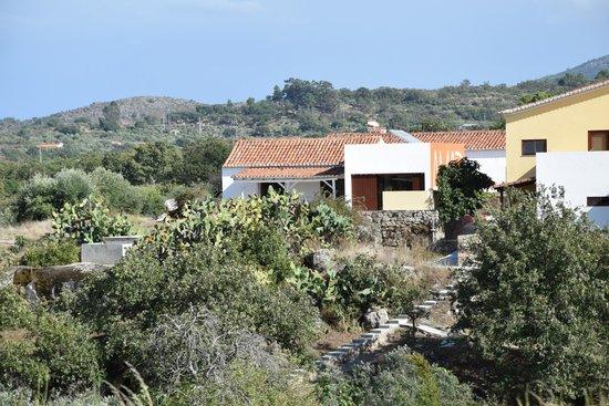 Quinta Serra De Sao Mamede: the house seen from the grounds