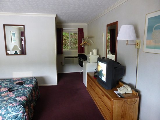 Castlewood Inn : Room with TV and Fridge