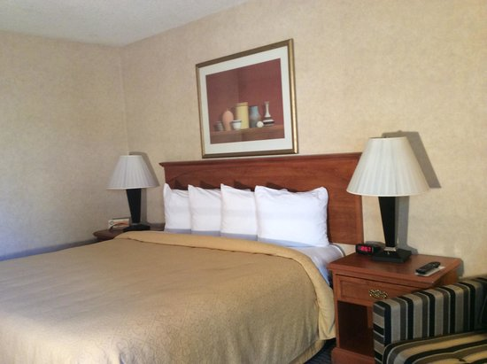 Quality Inn Ontario Airport Convention Center: Bed