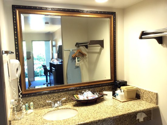 Quality Inn Ontario Airport Convention Center: Vanity