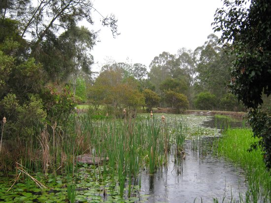 Barney Creek Cottages: This is the lake