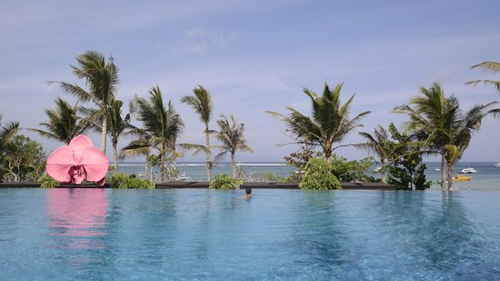 Fairmont Sanur Beach Bali : The amazing pool