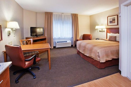 Candlewood Suites Apex Raleigh Area: 1 Queen Bed Studio - Candlewood Suites Apex NC hotel