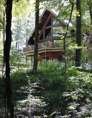 Nature's Pointe Cabins: Laurel Ridge Cabin from woods