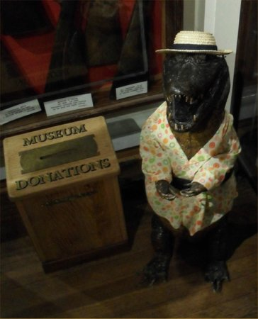 Whitby Museum: Love this chap!