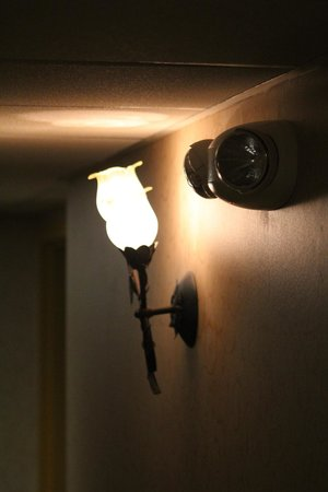 BEST WESTERN PLUS Sebastian Hotel & Suites: loved the lamps in the hallway