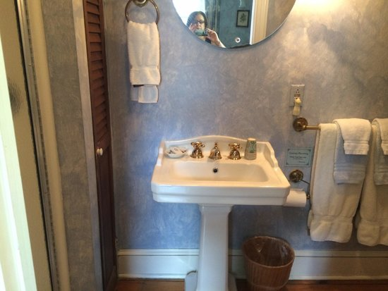 New Hope's 1870 Wedgwood Bed and Breakfast Inn: Tiny bathroom in U9