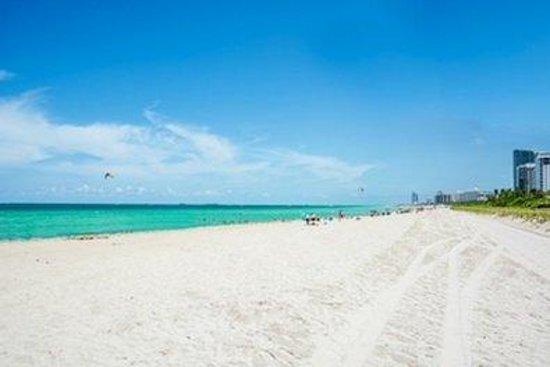 Silvia Miami Beach