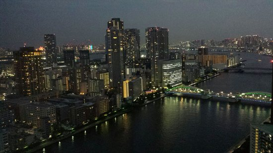 Ginza Creston Hotel: Only for the view