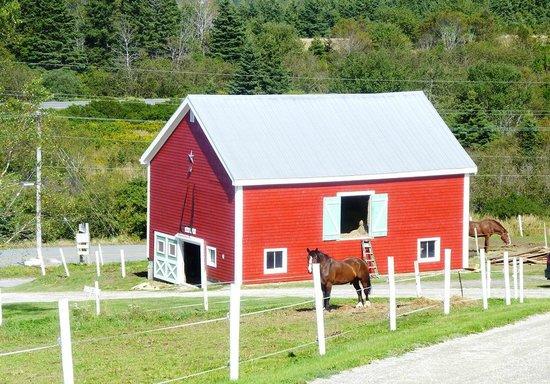 Lunenburg Oceanview Chalets : Little Red barn