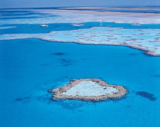 One&Only Hayman Island: Heart Reef