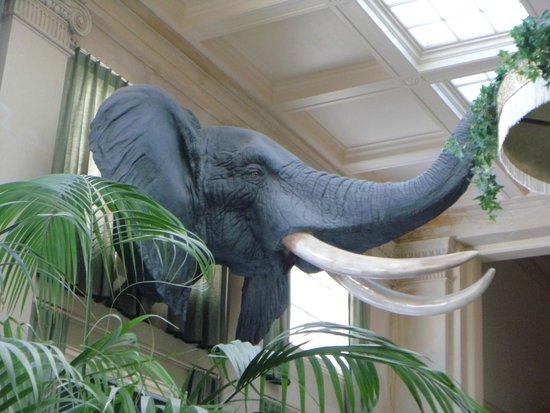George Eastman Museum: Aqui tudo rende uma história...