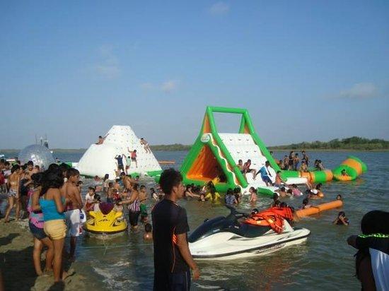 La Isla Hueso de Ballena