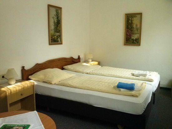 Hotel Jagerhof: Zimmer