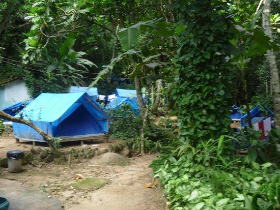 Holandes Hostel: Camping
