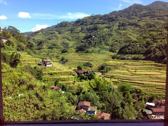 Banaue Homestay: View from the back patio/outdoor dining area