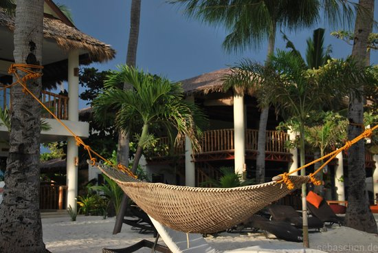 Ocean Vida Beach & Dive Resort: Everything available in order to relax