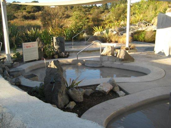 Hells Gate: The mud bath area