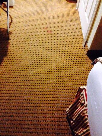 Americas Best Value Inn & Suites: Dirty carpet