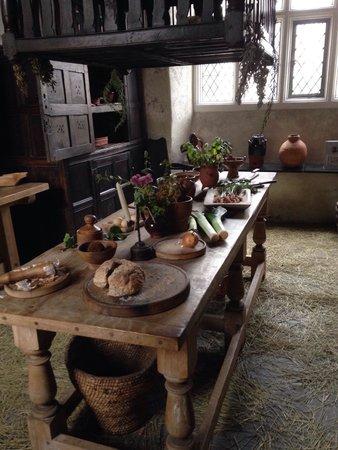 Plas Llwyd: Kitchen