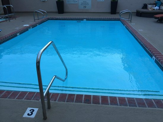 Renaissance Los Angeles Airport Hotel : The pool