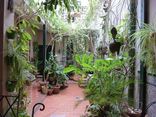 El Riad Andaluz: Patio