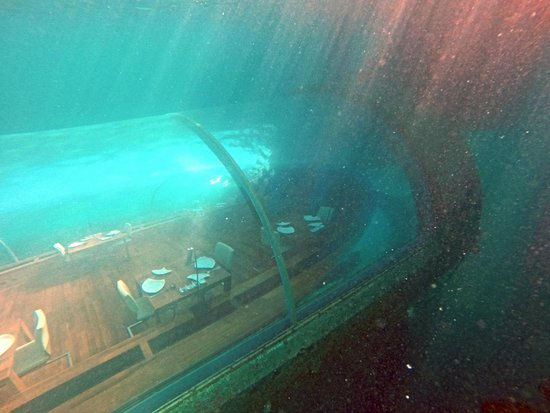 View From Above Picture Of Ithaa Undersea Restaurant
