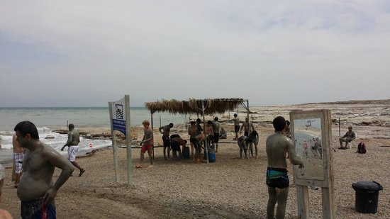 Rent a Guide Israel Tours: Mud bath at the Death Sea