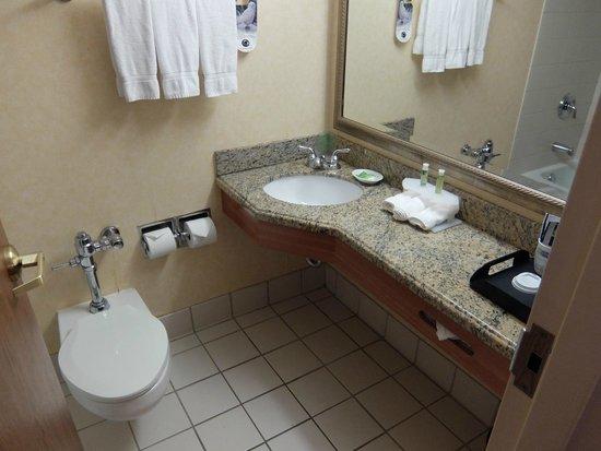 Edward Hotel Chicago: Bathroom