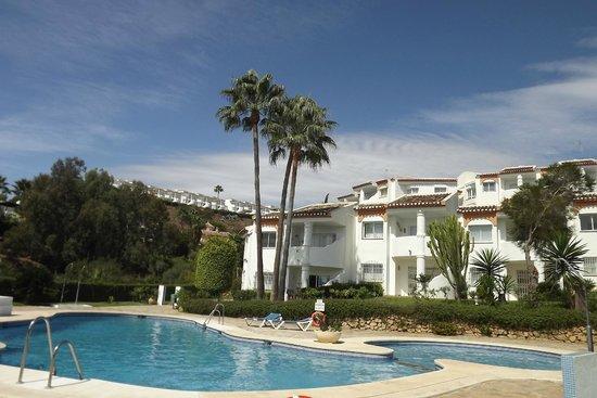 Club La Cartuja: The pool