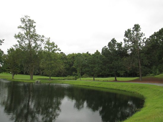 Goose Creek, SC: Beautiful water hazards!