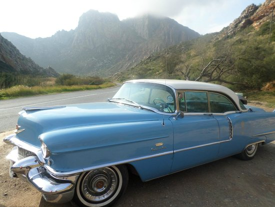 Montagu Country Hotel: The American dream car
